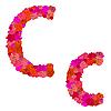 Vektor Cliparts: Blumen-Alphabet Zeichen CC