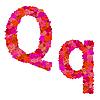 Векторный клипарт: Цветочный алфавит из красных роз, персонажи Qq