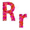Векторный клипарт: Цветочный алфавит из красных роз, характеры Rr