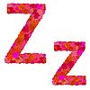 Векторный клипарт: Цветочный алфавит из красных роз, символы Zz