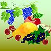 Векторный клипарт: Набор фруктов