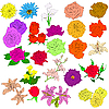Vektor Cliparts: Set von Blumen