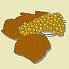Vektor Cliparts: Traube mit Blättern