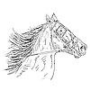 Векторный клипарт: конь