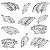 Vektor Cliparts: Set frische Meeresfische