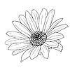Vector clipart: floral design element