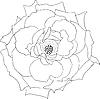 Векторный клипарт: цветочный элемент дизайна
