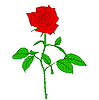 Vector clipart: One red Rose in style