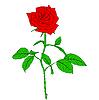 Vektor Cliparts: Eine rote Rose in der Stil