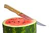 ID 3101979 | Watermelon with dry stem | Foto stockowe wysokiej rozdzielczości | KLIPARTO