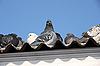 Photo 300 DPI: pigeons