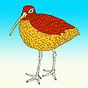 Векторный клипарт: Евразийская кроншнеп, птицы..