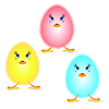 Vector clipart: Small fluffy chickens on white background