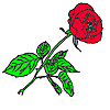 Vector clipart: floral design element and hand-drawn ,