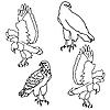 Vector clipart: Eagles symbols and tattoo