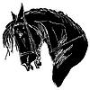 Векторный клипарт: черный конь
