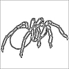 Vector clipart: Tattoo of black widow spider