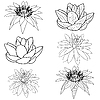 Vektor Cliparts: Orientalishe Blume Lotus