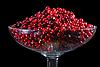 Photo 300 DPI: Cranberry
