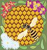 Bee on honeycombs | Stock Illustration