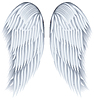 Vector clipart: Wings
