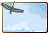 Векторный клипарт: Летящий аист и рамка