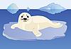 Векторный клипарт: Молодой тюлень на льдине