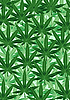 Vector clipart: Background of hemp leaves
