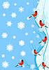 Vector clipart: Bullfinches on the branch