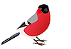 Vector clipart: Bullfinch