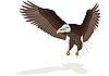 Векторный клипарт: Орел