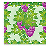 Vector clipart: Grapes