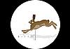 猎野兔 | 向量插图