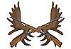 猎枪和麋鹿鹿角 | 向量插图
