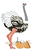 Vector clipart: Ostrich with chicks