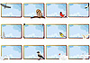 Vector clipart: birds and sky frames