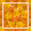 Vector clipart: The frame of autumn leaves