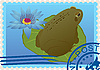 Postage stamp with frog