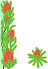 Vector clipart: Pine cones