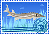 Vector clipart: Postage stamp Sturgeon