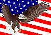 Флаг США и орел