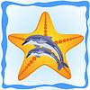 Векторный клипарт: Морская звезда и дельфины
