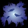 Акулы и дайверы в океане