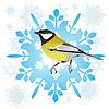 Векторный клипарт: Синица и снежинка