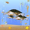 Vector clipart: Turtles in sea