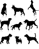 Vector clipart: Dogs