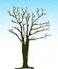 Winter tree | Stock Vector Graphics