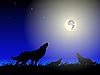 Векторный клипарт: Волки и луна