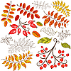 Vector clipart: Collection abstract autumn element