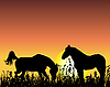 Vector clipart: horses on sunset